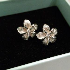Hypoallergenic Sterling Silver Stud Earrings